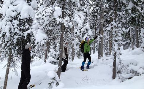 Ski Fitness Bootcamp