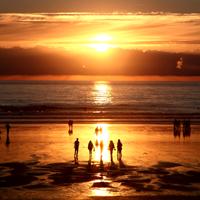 surfing-sunset